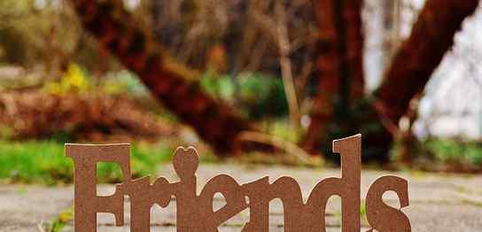 「Friends」の文字