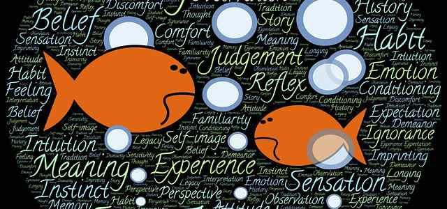 オレンジの魚のイラスト