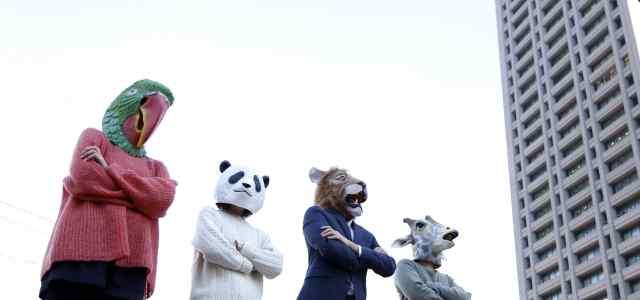 蛇、パンダ、ライオン、キリンの被り物をして腕を組んで立っている4人
