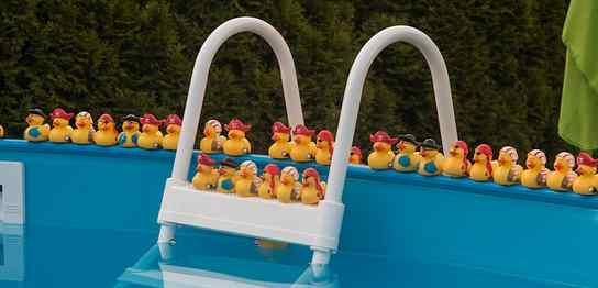 プールのはしご